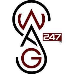 SWAG 247.biz logo