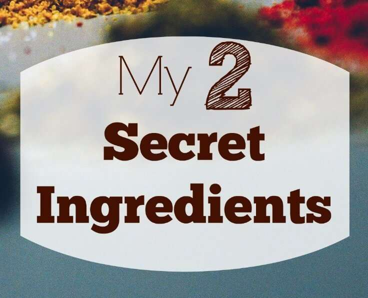 Two Secret Ingredients Necessary for a Successful Business